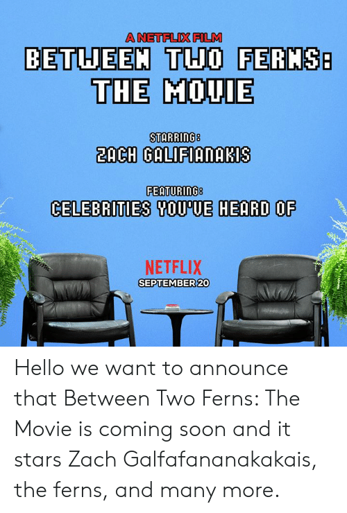 Celebrities: A NETFLIX FILM  BETUEEM THO FERMS  THE MOUIE  2ACH GALIFIANAKIS  FEATURING8  CELEBRITIES SOU'UE HEARD OF  NETFLIX  SEPTEMBER 20 Hello we want to announce that Between Two Ferns: The Movie is coming soon and it stars Zach Galfafananakakais, the ferns, and many more.