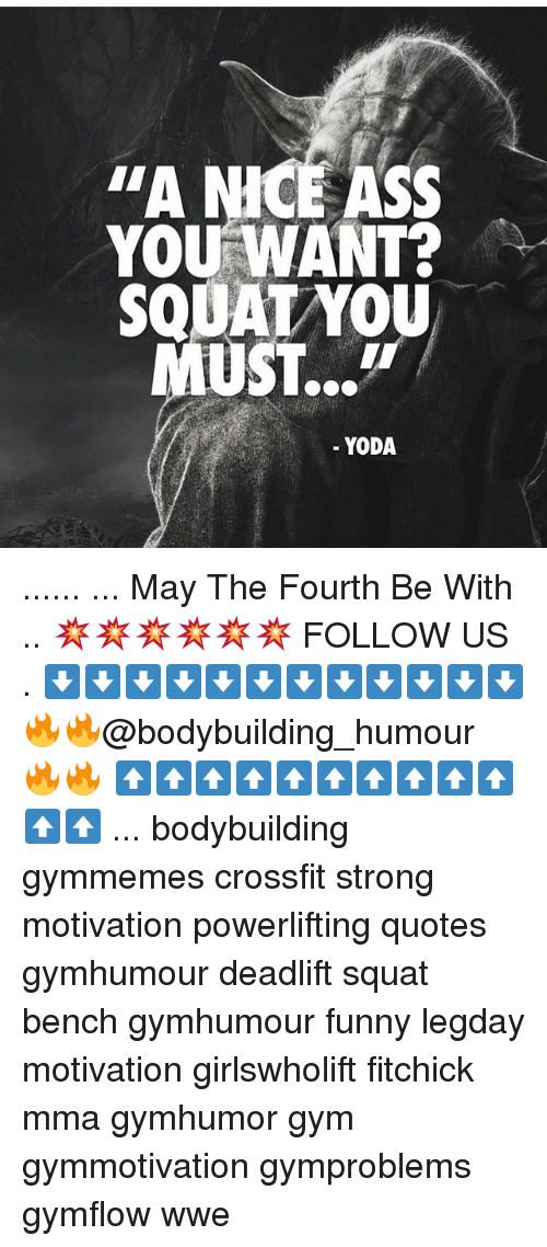 """Funny, Gym, and Memes: """"A NICE SS  YOU WANT?  SQUATYOU  UST...m  YODA ...... ... May The Fourth Be With .. 💥💥💥💥💥💥 FOLLOW US . ⬇️⬇️⬇️⬇️⬇️⬇️⬇️⬇️⬇️⬇️⬇️⬇️ 🔥🔥@bodybuilding_humour 🔥🔥 ⬆️⬆️⬆️⬆️⬆️⬆️⬆️⬆️⬆️⬆️⬆️⬆️ ... bodybuilding gymmemes crossfit strong motivation powerlifting quotes gymhumour deadlift squat bench gymhumour funny legday motivation girlswholift fitchick mma gymhumor gym gymmotivation gymproblems gymflow wwe"""