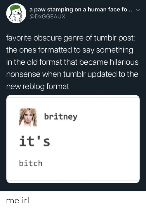britney: a paw stamping on a human face fo...  @DxGGEAUX  favorite obscure genre of tumblr post:  the ones formatted to say something  in the old format that became hilarious  nonsense when tumolr updated to the  new reblog format  britney  it's  bitch me irl