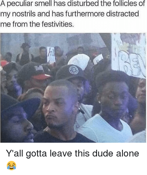 Memes, Festival, and 🤖: A peculiar smell has disturbed the follicles of  my nostrils and has furthermore distracted  me from the festivities. Y'all gotta leave this dude alone 😂
