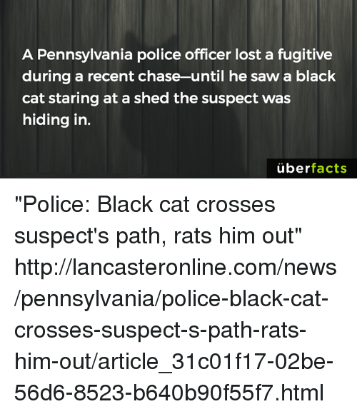 "Cats, Memes, and Uber: A Pennsylvania police officer lost a fugitive  during a recent chase-until he saw a black  cat staring at a shed the suspect was  hiding in.  uber  facts ""Police: Black cat crosses suspect's path, rats him out"" http://lancasteronline.com/news/pennsylvania/police-black-cat-crosses-suspect-s-path-rats-him-out/article_31c01f17-02be-56d6-8523-b640b90f55f7.html"