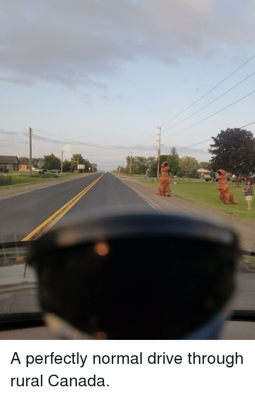Funny, Canada, and Drive: A perfectly normal drive through rural Canada.