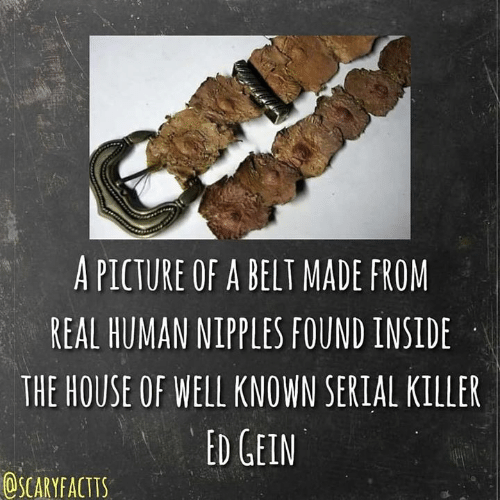 ed gein: A PICTURE OF A BELT MADE FROM  REAL HUMAN NIPPLES FOUND INSIDE  THE HOUSE OF WELL KNOWN SERIAL KILLER  ED GEIN  OSCARYFACITS