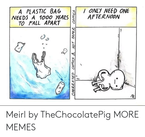 plastic bag: A PLASTIC BAG ONLY NEED ONE  NEEDS A 1000 YEARSAFTERNOON  TO FALL APART  e u  乀J Meirl by TheChocolatePig MORE MEMES