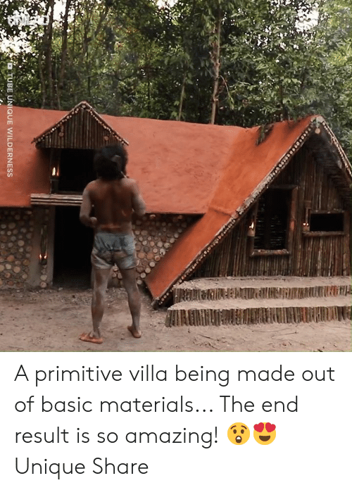 Dank, Amazing, and 🤖: A primitive villa being made out of basic materials... The end result is so amazing! 😲😍  Unique Share