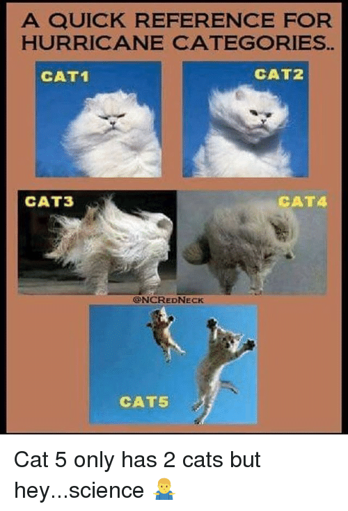 Cats, Funny, and Hurricane: A QUICK REFERENCE FOR  HURRICANE CATEGORIES  CAT1  CAT2  CAT3  CATA  ONCREDNECK  CAT5 Cat 5 only has 2 cats but hey...science 🤷‍♂️