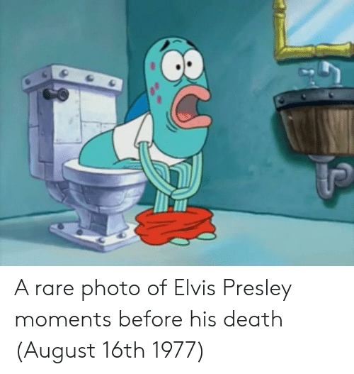Elvis Presley: A rare photo of Elvis Presley moments before his death (August 16th 1977)