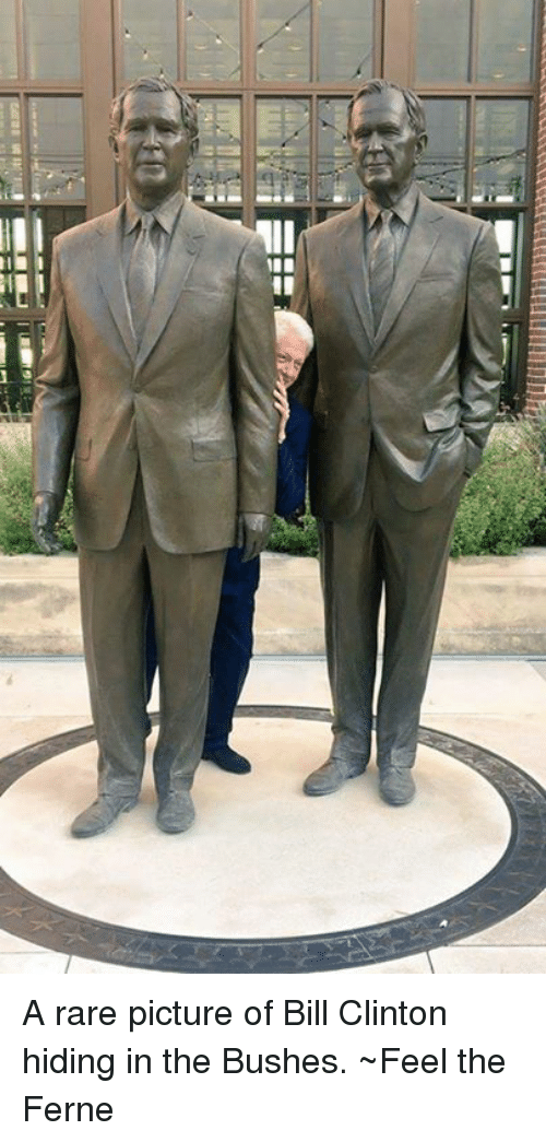 A Rare Picture of Bill Clinton Hiding in the Bushes Feel the Ferne Bill Cl