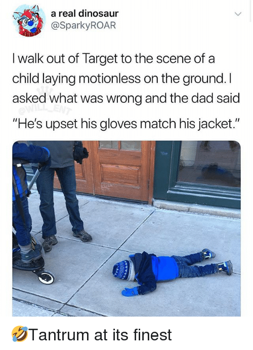 "Dad, Dinosaur, and Memes: a real dinosaur  @SparkyROAR  I walk out of Target to the scene of a  child laying motionless on the ground. I  asked what was wrong and the dad said  ""He's upset his gloves match his jacket."" 🤣Tantrum at its finest"