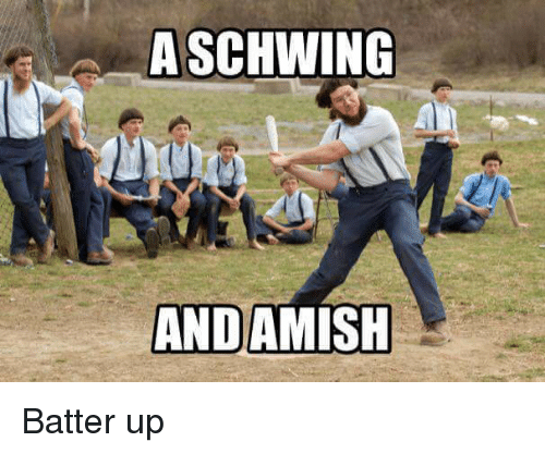 Ups, Punny, and Schwing: A SCHWING ANDAMISHBatter up