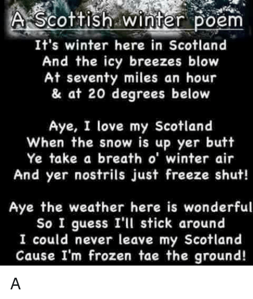 Butt, Frozen, and Memes: A Scottish winter  Poem  It's winter here in Scotland  And the icy breezes blow  At seventy miles an hour  & at 20 degrees below  Aye, I love my Scotland  When the snow is up yer butt  Ye take a breath o' winter air  And yer nostrils just freeze shut!  Aye the weather here is wonderful  So I guess I'll stick around  I could never leave my Scotland  Cause I'm frozen tae the ground! A