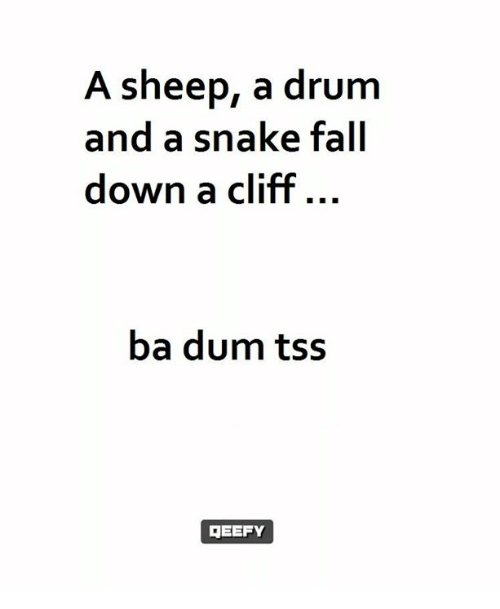 Memes, Snake, and Snakes: A sheep, a drum  and a snake fall  down a cliff  ba dum tss  GEEFY