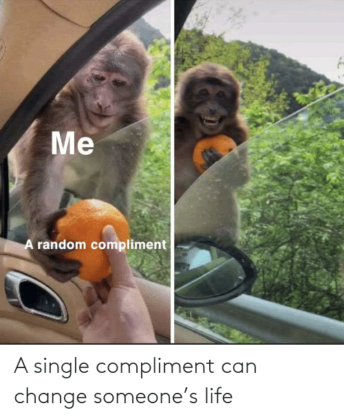 compliment: A single compliment can change someone's life