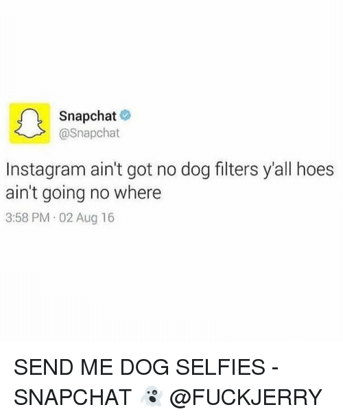 Dog, Dogging, and Aug: A Snapchat  @Snapchat  Instagram ain't got no dog filters y'all hoes  ain't going no where  3:58 PM 02 Aug 16 SEND ME DOG SELFIES - SNAPCHAT 👻 @FUCKJERRY