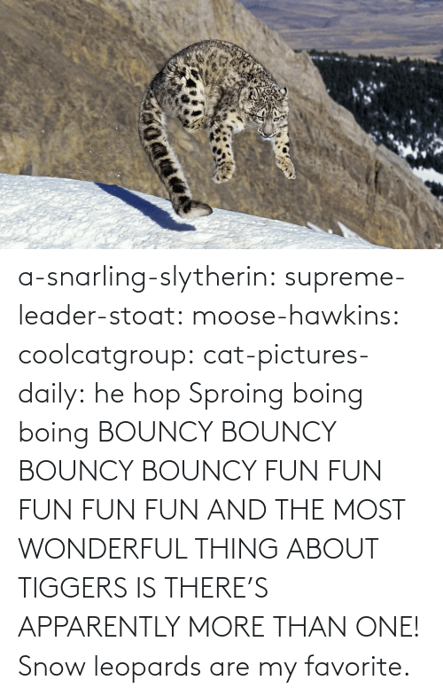 hop: a-snarling-slytherin: supreme-leader-stoat:  moose-hawkins:  coolcatgroup:  cat-pictures-daily: he hop  Sproing boing boing    BOUNCY BOUNCY BOUNCY BOUNCY FUN FUN FUN FUN FUN  AND THE MOST WONDERFUL THING ABOUT TIGGERS IS THERE'S APPARENTLY MORE THAN ONE!   Snow leopards are my favorite.