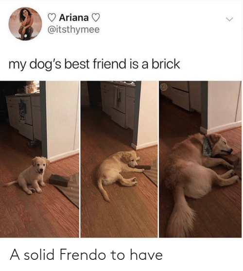 solid: A solid Frendo to have