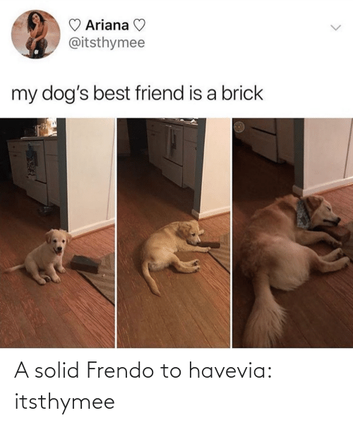 solid: A solid Frendo to havevia: itsthymee