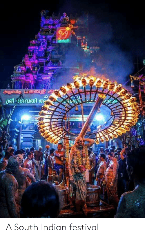 Indian: A South Indian festival