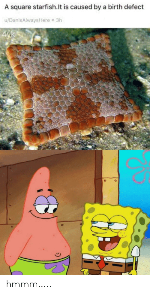 birth: A square starfish.lt is caused by a birth defect  u/DanlsAlwaysHere 3h  4yk hmmm…..
