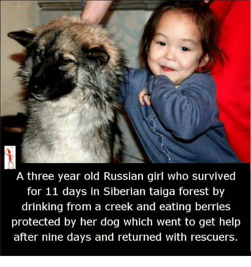 Russian Girl: A three year old Russian girl who survived  for 11 days in Siberian taiga forest by  drinking from a creek and eating berries  protected by her dog which went to get help  after nine days and returned with rescuers