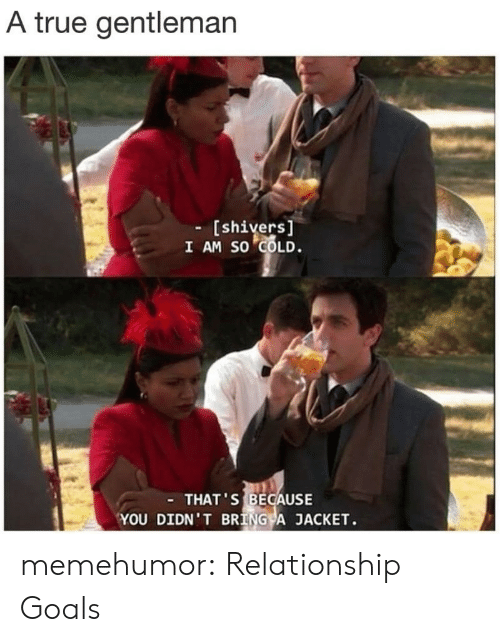 True Gentleman: A true gentleman  - [shivers  I AM SO COLD.  THAT'S BECAUSE  YOU DIDN' T BRING A JACKET. memehumor:  Relationship Goals