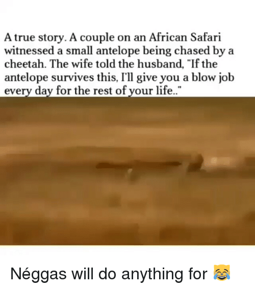 "Funny, Life, and True: A true story. A couple on an African Safari  witnessed a small antelope being chased by a  cheetah. The wife told the husband, ""If the  antelope survives this, I'll give you a blow job  every day for the rest of your life Néggas will do anything for 😹"