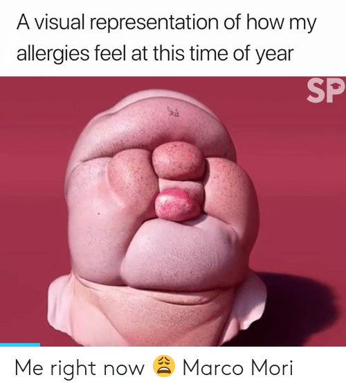 allergies: A visual representation of how my  allergies feel at this time of year  SP  Stu Me right now 😩  Marco Mori