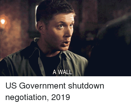 Shutdown: A WALL US Government shutdown negotiation, 2019