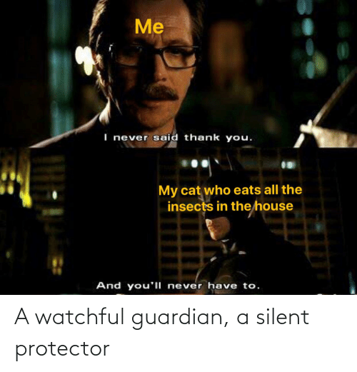 Guardian: A watchful guardian, a silent protector