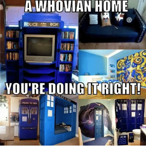 Youre Doing It Right: A WHOVIAN HOME  LICE  BOX  YOU'RE DOING IT RIGHT!  POLCE BOX
