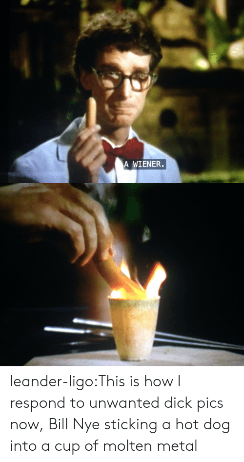 ligo: A WIENER. leander-ligo:This is how I respond to unwanted dick pics now, Bill Nye sticking a hot dog into a cup of molten metal