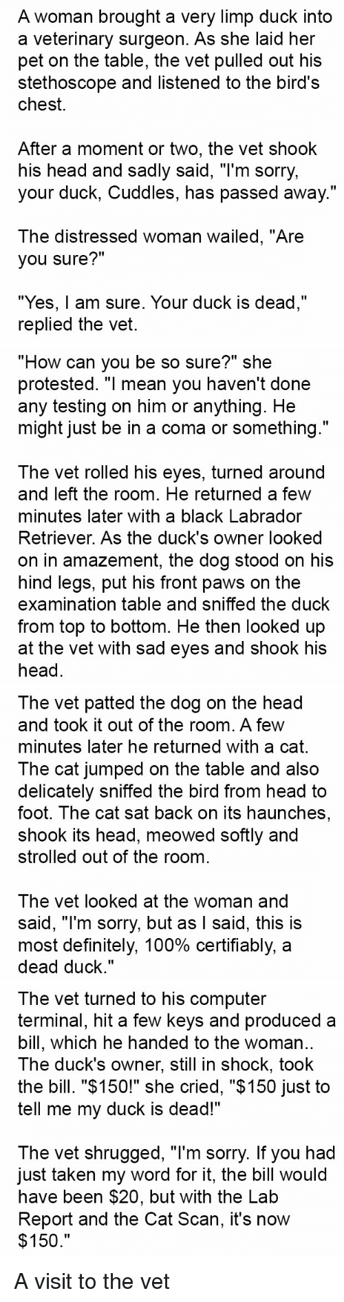 "sad eyes: A woman brought a very limp duck into  a veterinary surgeon. As she laid her  pet on the table, the vet pulled out his  stethoscope and listened to the bird's  chest.  After a moment or two, the vet shook  his head and sadly said, ""I'm sorry,  your duck, Cuddles, has passed away.""  The distressed woman wailed, ""Are  you sure?""  ""Yes, am sure. Your duck is dead,""  replied the vet.   ""How can you be so sure?"" she  protested. ""I mean you haven't done  any testing on him or anything. He  might just be in a coma or something.""  The vet rolled his eyes, turned around  and left the room. He returned a few  minutes later with a black Labrador  Retriever. As the duck's owner looked  on in amazement, the dog stood on his  hind legs, put his front paws on the  examination table and sniffed the duck  from top to bottom. He then looked up  at the vet with sad eyes and shook his  head   The vet patted the dog on the head  and took it out of the room. A few  minutes later he returned with a cat.  The cat jumped on the table and also  delicately sniffed the bird from head to  foot. The cat sat back on its haunches  shook its head, meowed softly and  strolled out of the room  The vet looked at the woman and  said, ""I'm sorry, but as I said, this is  most definitely, 100% certifiably, a  dead duck.""   The vet turned to his computer  terminal, hit a few keys and produced a  bill, which he handed to the woman  The duck's owner, still in shock, took  the bill. ""$150!"" she cried, ""$150 just to  tell me my duck is dead!""  The vet shrugged, ""l'm sorry. If you had  Just taken my word for it, the bill Would  have been $20, but with the Lab  Report and the Cat Scan, it's now  $150 A visit to the vet"