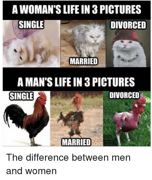 25+ Best Memes About Difference Between Men And Women