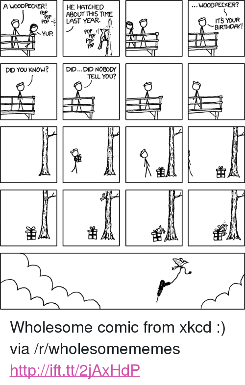 "woodpecker: A WOODPECKER!  HE HATCHED  WOODPECKER?  POPABOUT THIS TIME  poP LAST YEAR.  TS YOUR  BIRTHDAY!  POP  POR  POP  DID YOU KNOW?  DID... DID NOBODY  TELL YOU <p>Wholesome comic from xkcd :) via /r/wholesomememes <a href=""http://ift.tt/2jAxHdP"">http://ift.tt/2jAxHdP</a></p>"