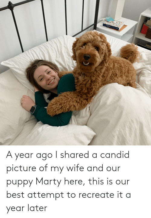 Picture Of My Wife: A year ago I shared a candid picture of my wife and our puppy Marty here, this is our best attempt to recreate it a year later