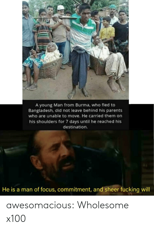 commitment: A young Man from Burma, who fled to  Bangladesh, did not leave behind his parents  who are unable to move. He carried them on  his shoulders for 7 days until he reached his  destination.  He is a man of focus, commitment, and sheer fucking will awesomacious:  Wholesome x100