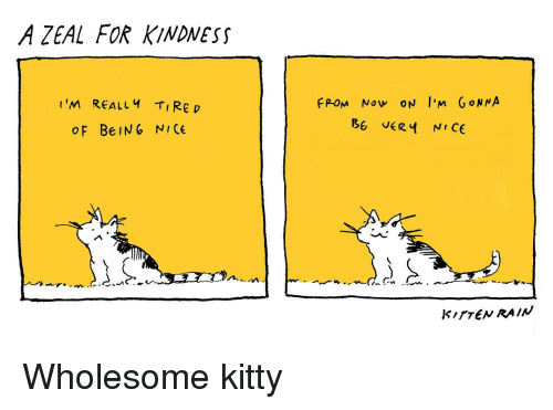 Rain, Wholesome, and Kindness: A ZEAL FOR KINDNESS  t'M REALLY Rep  FPOM Now ON I'm GoN NA  OF BeIN6 NICE  KITTEN RAIN <p>Wholesome kitty</p>