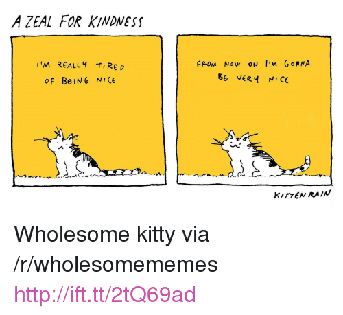 """Http, Rain, and Wholesome: A ZEAL FOR KINDNESS  t'M REALLY Rep  FPOM Now ON I'm GoN NA  OF BeIN6 NICE  KITTEN RAIN <p>Wholesome kitty via /r/wholesomememes <a href=""""http://ift.tt/2tQ69ad"""">http://ift.tt/2tQ69ad</a></p>"""