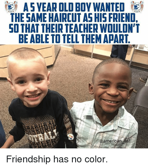 Haircut, Memes, and Teacher: A5YEAR OLD BOY WANTED  THE SAME HAIRCUT AS HIS FRIEND,  SO THAT THEIR TEACHER WOULDN'T  BE ABLE TO TELL THEMAPART  americanzast Friendship has no color.