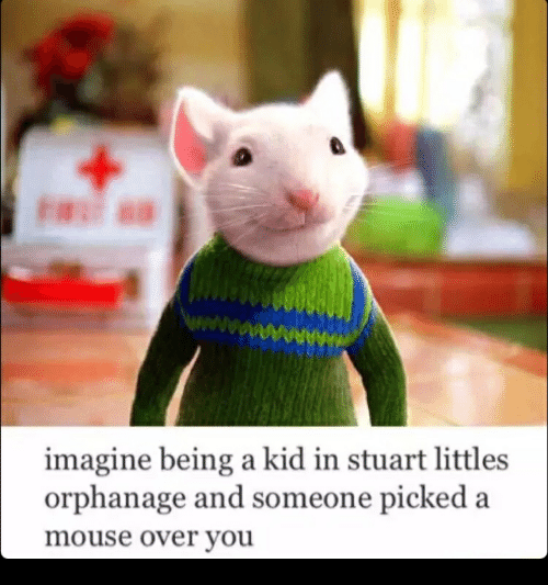 Littles: AAAA  AN  imagine being a kid in stuart littles  orphanage and someone picked a  mouse over you