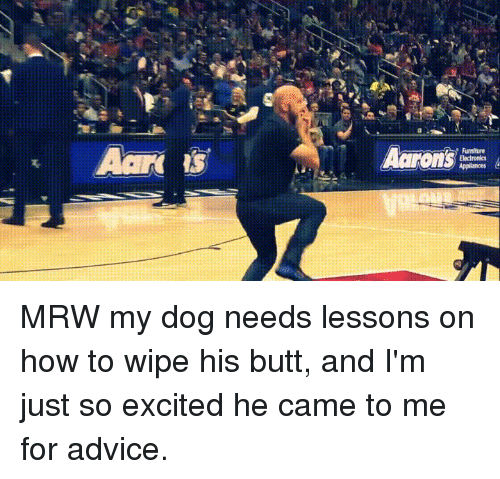 Advice, Butt, and Mrw: Aard  ts  Aarons MRW my dog needs lessons on how to wipe his butt, and I'm just so excited he came to me for advice.