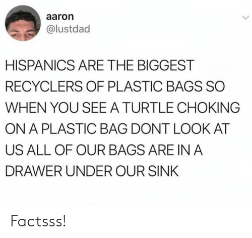 plastic bag: aaron  @lustdad  HISPANICS ARE THE BIGGEST  RECYCLERS OF PLASTIC BAGS SO  WHEN YOU SEE A TURTLE CHOKING  ON A PLASTIC BAG DONT LOOK AT  US ALL OF OUR BAGS ARE IN A  DRAWER UNDER OUR SINK Factsss!