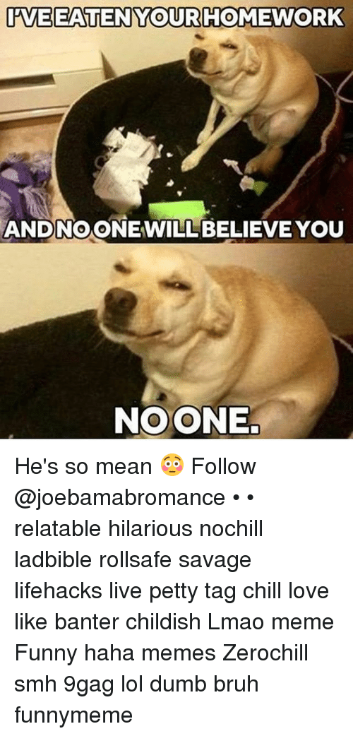 9gag, Bruh, and Chill: AAVEEATEN YOUR HOMEWORK  ANDNOONEWILL BELIEVE YOU  NOONE. He's so mean 😳 Follow @joebamabromance • • relatable hilarious nochill ladbible rollsafe savage lifehacks live petty tag chill love like banter childish Lmao meme Funny haha memes Zerochill smh 9gag lol dumb bruh funnymeme