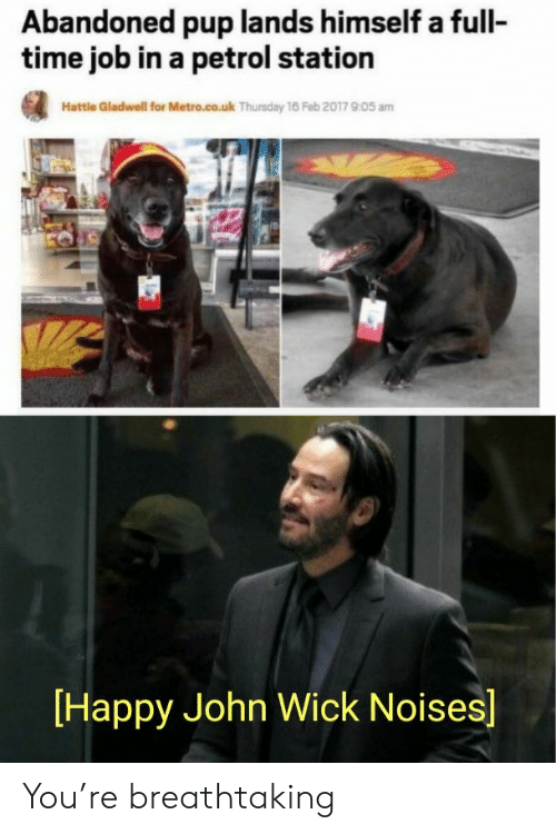 Metro: Abandoned pup lands himself a full-  time job in a petrol station  Hattle Gladwell for Metro.co.uk Thursday 16 Feb 2017 905 am  Happy John Wick Noises] You're breathtaking