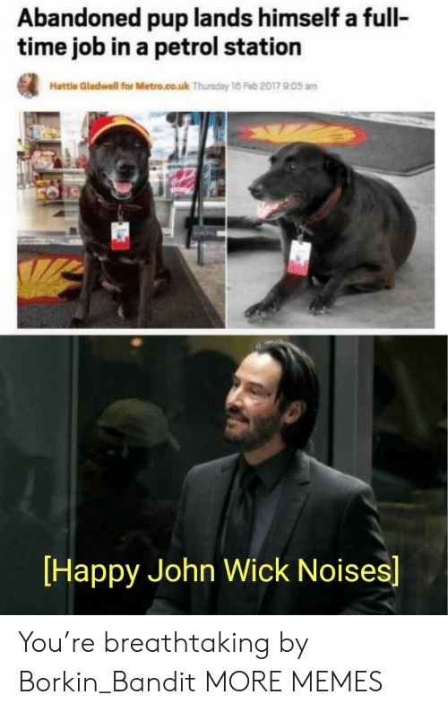 Metro: Abandoned pup lands himself a full-  time job in a petrol station  Hattle Gladwell for Metro.co.uk Thursday 16 Feb 2017 905 am  Happy John Wick Noises] You're breathtaking by Borkin_Bandit MORE MEMES
