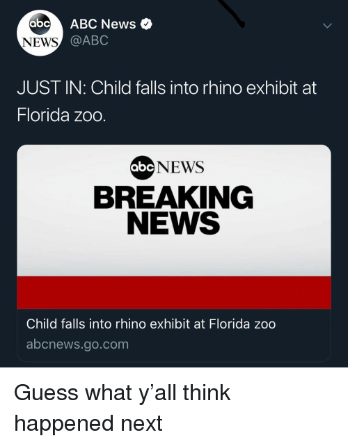 Abc News: abc ABC News  NEWS  @ABC  JUST IN: Child falls into rhino exhibit at  Florida zoo  NEWS  BREAKING  NEWS  abc  Child falls into rhino exhibit at Florida zoo  abcnews.go.com Guess what y'all think happened next