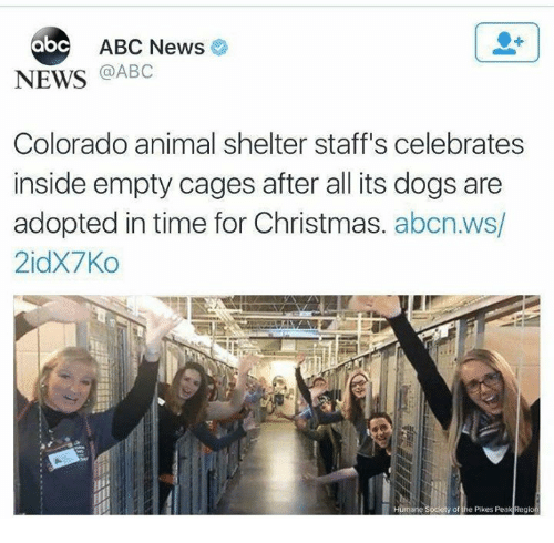 Abc News: ABC News  abc  NEWS @ABC  Colorado animal shelter staff's celebrates  inside empty cages after all its dogs are  adopted in time for Christmas. abcn.ws/  2idx7Ко  of the Pkes