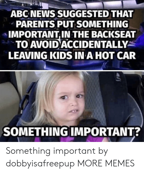 Abc News: ABC NEWS SUGGESTED THAT  PARENTS PUT SOMETHING  IMPORTANT,IN THE BACKSEAT  TO AVOID ACCIDENTALLY  LEAVING KIDS IN A HOT CAR  SOMETHING IMPORTANT? Something important by dobbyisafreepup MORE MEMES