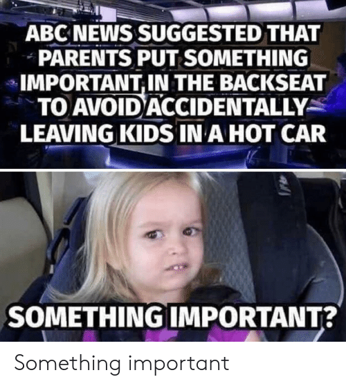 Abc News: ABC NEWS SUGGESTED THAT  PARENTS PUT SOMETHING  IMPORTANT,IN THE BACKSEAT  TO AVOID ACCIDENTALLY  LEAVING KIDS IN A HOT CAR  SOMETHING IMPORTANT? Something important