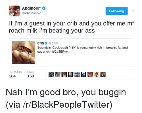 """Buggin: Abdinoor^  @Abdinoorx2  Following  If l'm a guest in your crib and you offer me mf  roach milk I'm beating your ass  CNN Ф @CNN  Scientists: Cockroach """"milk"""" is remarkably rich in protein, fat and  sugar cnn.it/2a3ERym  RETWEETSLIKES  164158  158 <p>Nah I&rsquo;m good bro, you buggin (via /r/BlackPeopleTwitter)</p>"""
